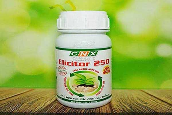 Elicitor 250